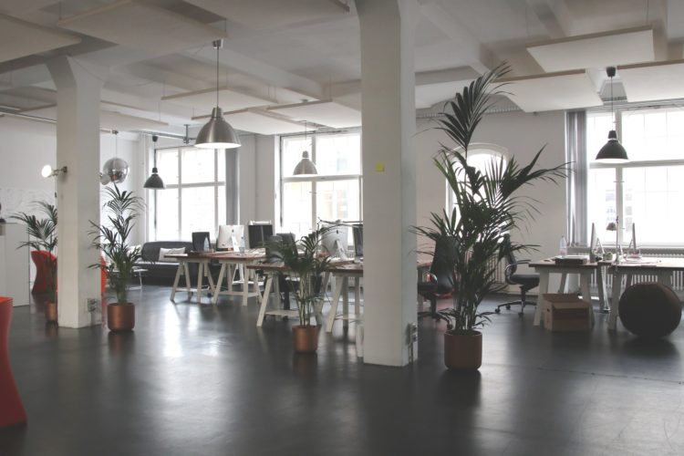 Suspended ceilings – the environmentally-friendly choice